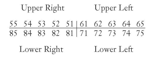numerazione dei denti da latte